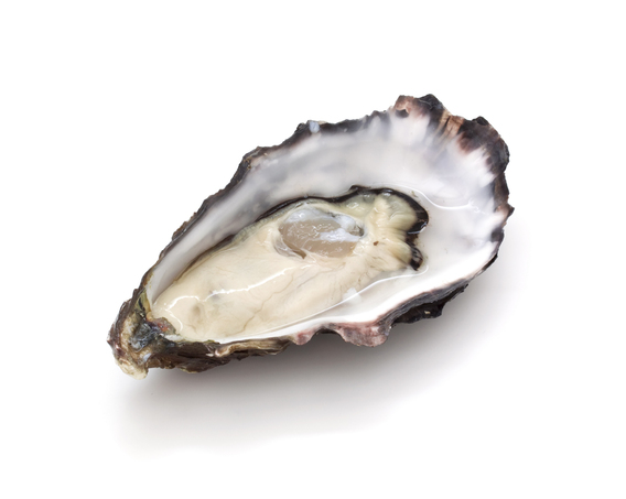 raw and fresh oysters promote sexual activity