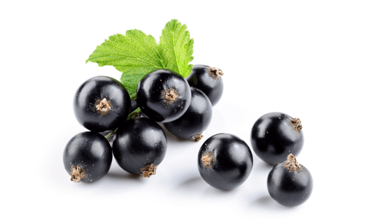 The small amount of acai berry on white background
